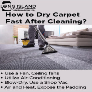 how to dry carpet fast after cleaning
